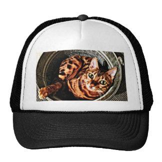 Bengal Cat Bucket Print Trucker Hat