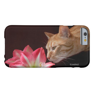 Bengal Cat jjhelene iPhone 6/6s Barely There Barely There iPhone 6 Case