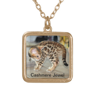 Bengal Cat Kitten photo locket necklace