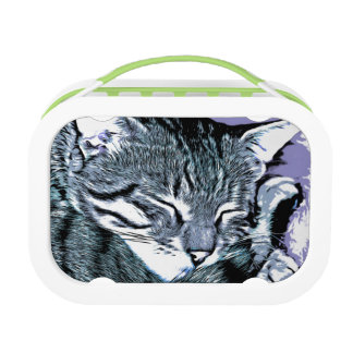 Bengal Kitten Nap Lunch Box
