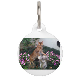 Bengal on statue pet tag