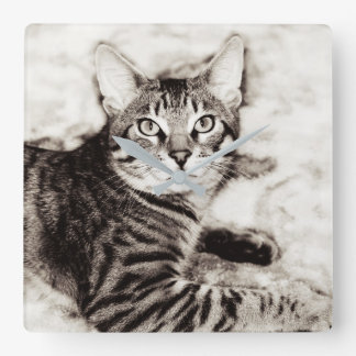 Bengal Photo Square Wall Clock