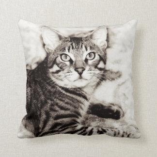 Bengal Photo Throw Pillow