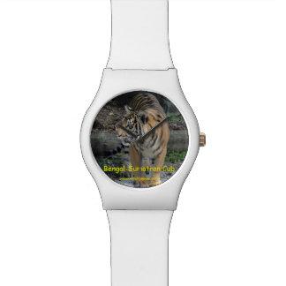Bengal-Sumatran Tiger Cub Watches