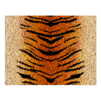 Bengal Tiger Animal Fur Postcard