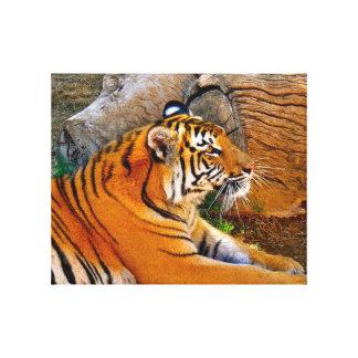 Bengal Tiger Canvas Print