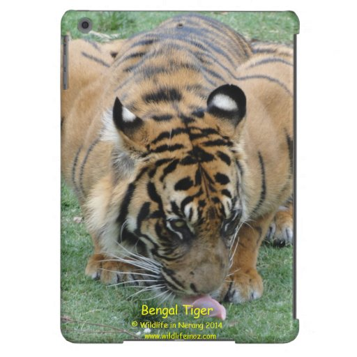 Bengal Tiger Cover For iPad Air