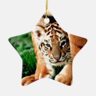 Bengal Tiger Cub Peers Out Ceramic Ornament