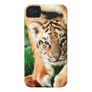 Bengal Tiger Cub Peers Out iPhone 4 Case-Mate Case