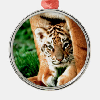 Bengal Tiger Cub Peers Out Metal Ornament
