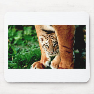 Bengal Tiger Cub Peers Out Mouse Pad