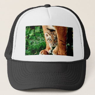 Bengal Tiger Cub Peers Out Trucker Hat