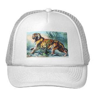 BENGAL TIGER MESH HAT