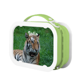 Bengal Tiger in India Lunchboxes