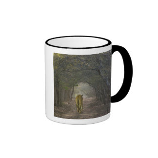 Bengal Tiger in the forest in Ranthambore Coffee Mugs