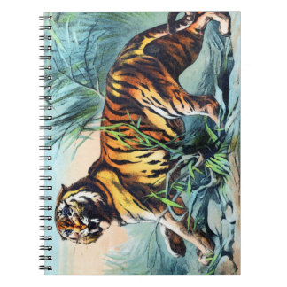 BENGAL TIGER NOTE BOOK