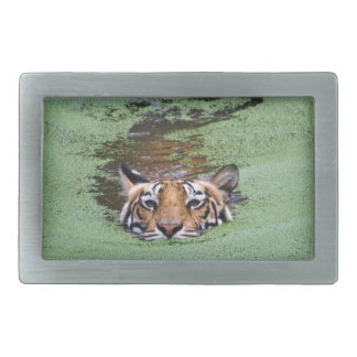 Bengal Tiger Swimming Belt Buckle