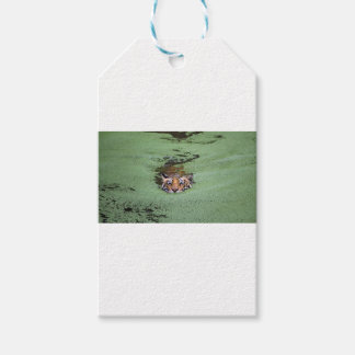 Bengal Tiger Swimming Gift Tags