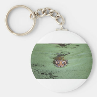 Bengal Tiger Swimming Keychain