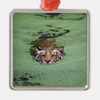 Bengal Tiger Swimming Metal Ornament