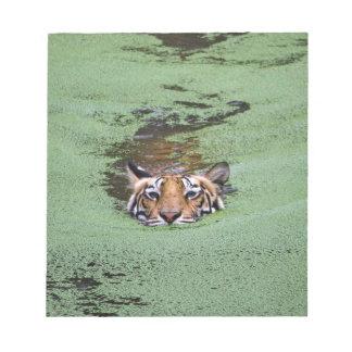 Bengal Tiger Swimming Notepad