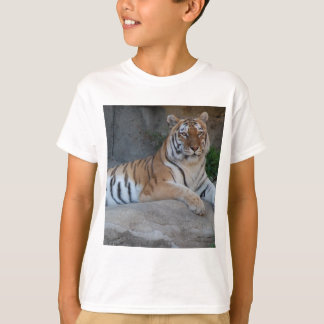Bengal Tigers T-Shirt