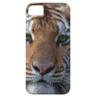 Bengel Tiger green eyes iPhone 5 Cases