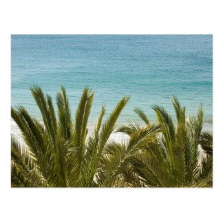 Benidorm Beach Postcard