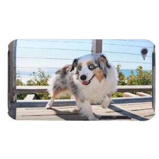 Bennett - Aussie Mini - Rosie - Carmel Beach iPod Touch Covers