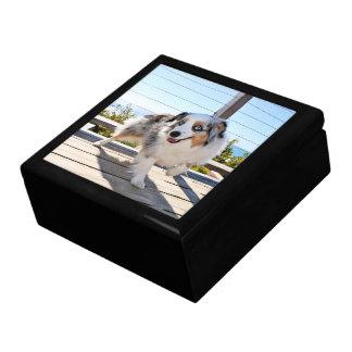 Bennett - Aussie Mini - Rosie - Carmel Beach Jewelry Box