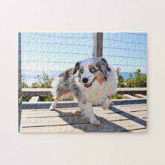 Bennett - Aussie Mini - Rosie - Carmel Beach Jigsaw Puzzle