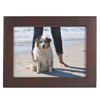 Bennett - Aussie Mini - Rosie - Carmel Beach Keepsake Box