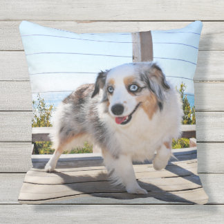 Bennett - Aussie Mini - Rosie - Carmel Beach Outdoor Pillow