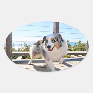 Bennett - Aussie Mini - Rosie - Carmel Beach Oval Sticker