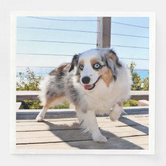 Bennett - Aussie Mini - Rosie - Carmel Beach Paper Dinner Napkin