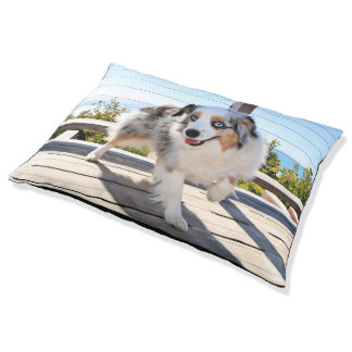 Bennett - Aussie Mini - Rosie - Carmel Beach Pet Bed