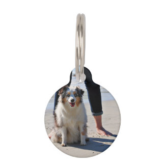 Bennett - Aussie Mini - Rosie - Carmel Beach Pet ID Tag
