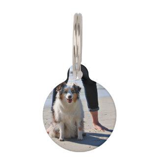 Bennett - Aussie Mini - Rosie - Carmel Beach Pet Nametag