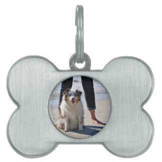 Bennett - Aussie Mini - Rosie - Carmel Beach Pet Tags