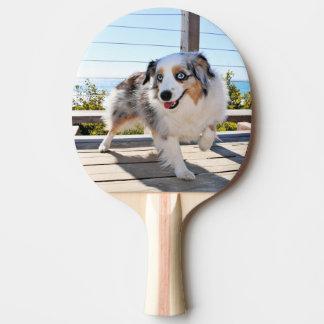 Bennett - Aussie Mini - Rosie - Carmel Beach Ping Pong Paddle
