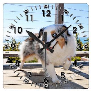 Bennett - Aussie Mini - Rosie - Carmel Beach Wall Clock