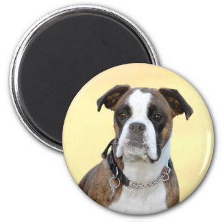 Benson the Boxer dog Magnet