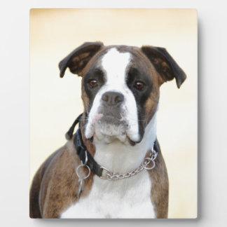 Benson the Boxer dog Plaque