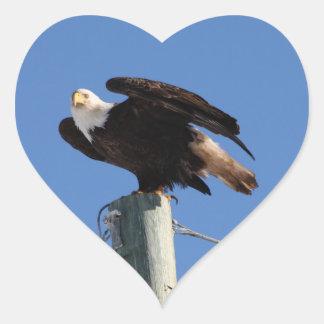 BEOUP Bald Eagle on Utility Pole Heart Sticker