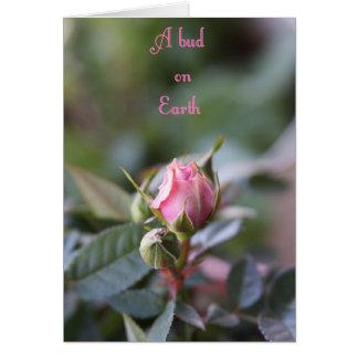 Bereavement card, rose bud card