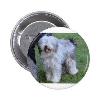 Bergamasco Shepherd Dog 2 Inch Round Button