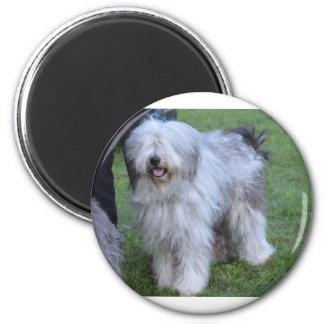 Bergamasco Shepherd Dog 2 Inch Round Magnet
