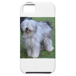 Bergamasco Shepherd Dog Case For The iPhone 5