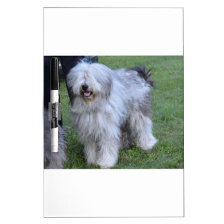 Bergamasco Shepherd Dog Dry Erase Board