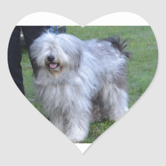 Bergamasco Shepherd Dog Heart Sticker